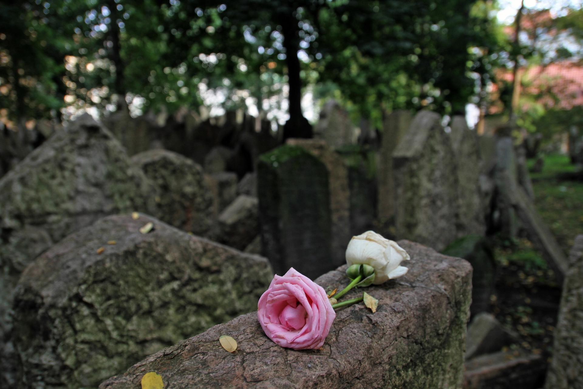 Żyć i umrzeć w Pruszkowie