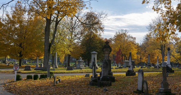 Praga Północ i jej niezwykłe nekropolie