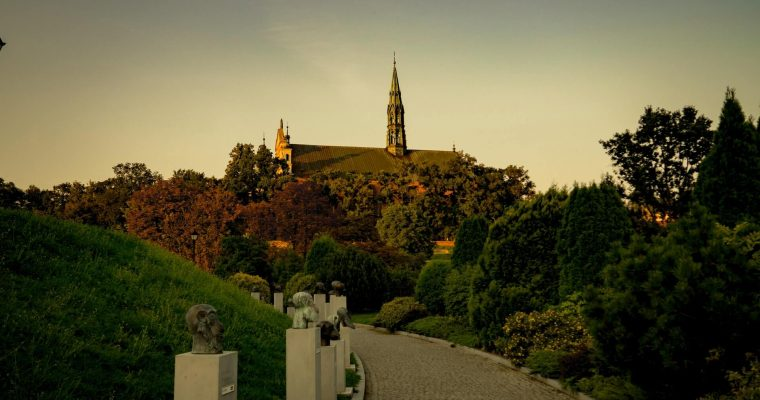 Wieńce i wiązanki w Sandomierzu